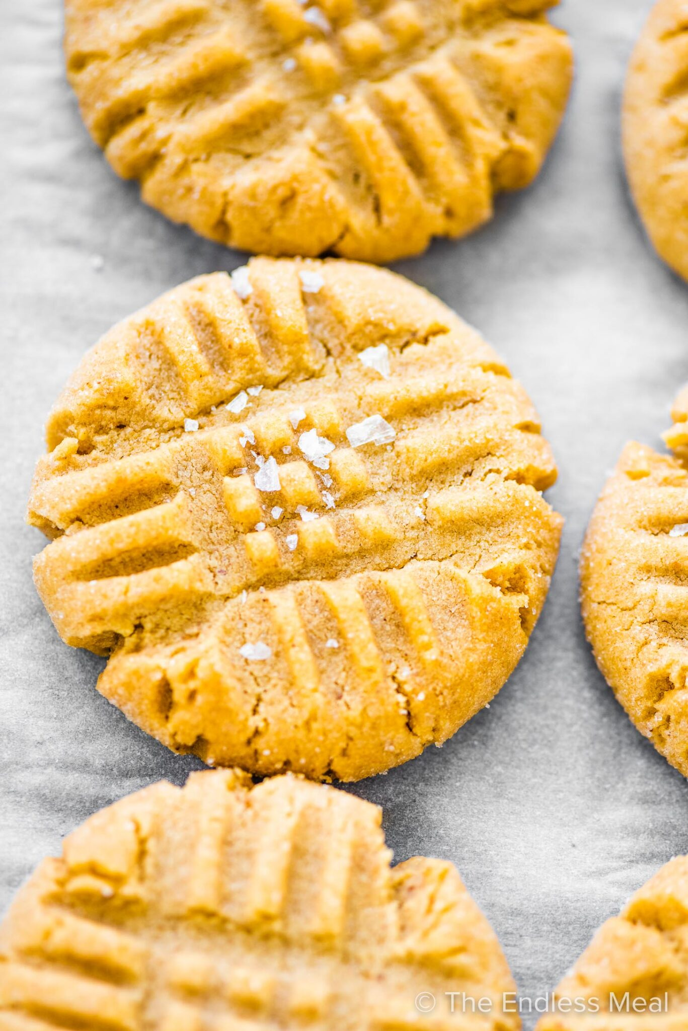 A closeup of chewy peanut butter cookies on a baking tray.