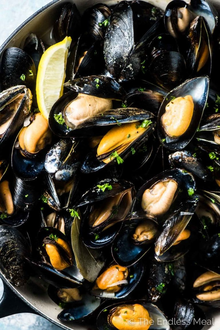 A big pot of mussels in white wine sauce on a blue and white table.