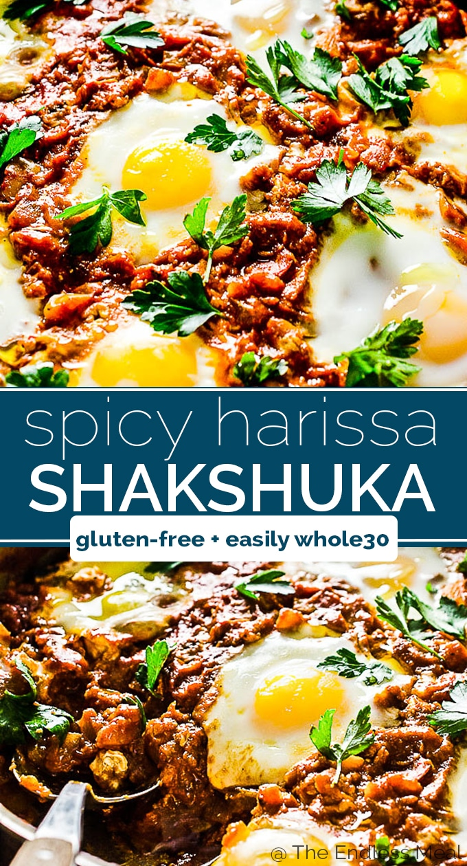 SAVE FOR LATER! Harissa Shakshuka is a slightly spicy version of our favorite one-pan breakfast recipe. A little harissa paste is added to the rich tomato sauce and the eggs are baked right into it. It's healthy and delicious! | gluten-free + vegetarian + easily Whole30 | #theendlessmeal #shakshuka #eggs #breakfast #brunch #harissa #glutenfree #paleo #vegtarian #whole30 #healthyrecipes #makeaheadrecipes #easyrecipes #breakfastrecipes