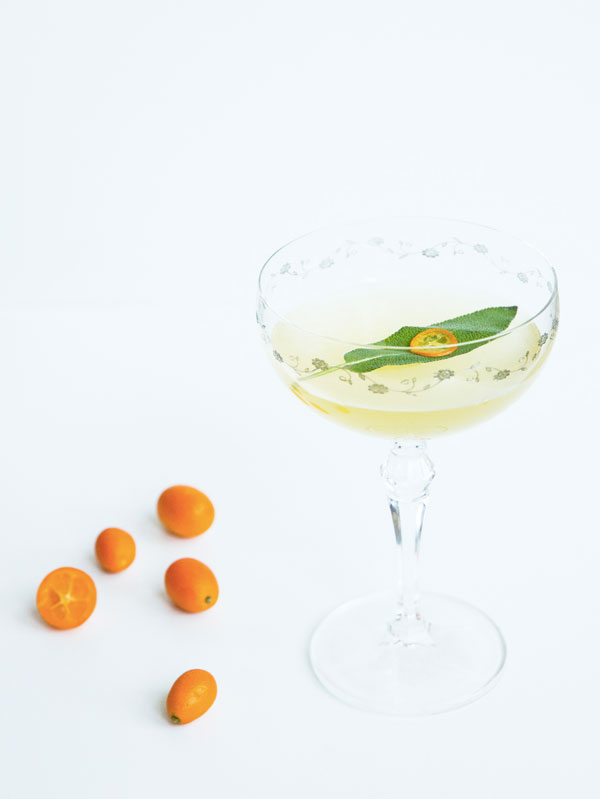Sunday Supper :: 01.11.14 :: The fortunate Few {a kumquat and gin cocktail with chartreuse and lillet}