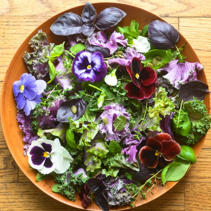 Purple Kale and Pansy Salad :: View from The Great Island