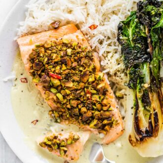 Pistachio crusted salmon on a plate with rice and bok choy.