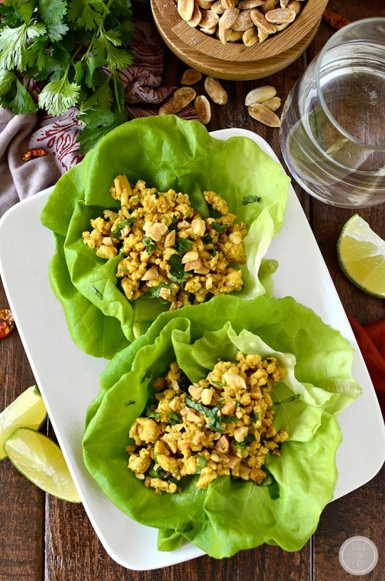 The 15 Best Healthy Recipes for a New Year | 20 Minute Chicken Satay Lettuce Wraps by Iowa Girl Eats