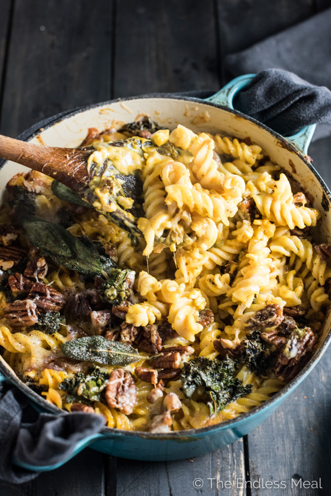 This cheesy Sage Pumpkin Pasta Bake is the ultimate grown-up, autumn casserole recipe. It's dotted with kale, topped with butter pecans, and smothered in an easy to make creamy pumpkin sauce. | theendlessmeal.com