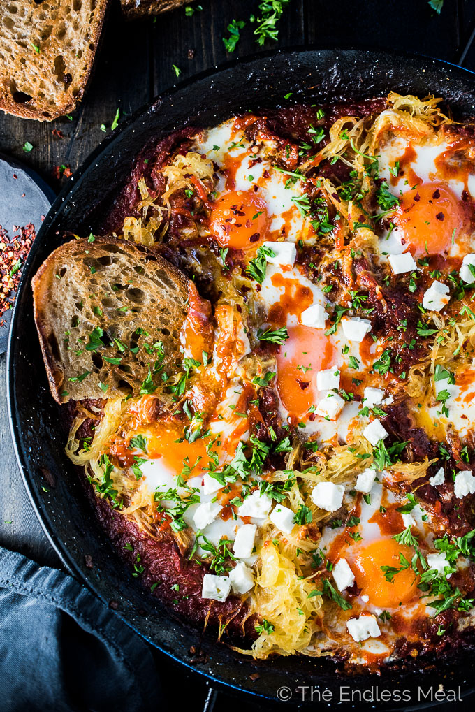 Eggs in Purgatory is a simple and super healthy recipe that is crazy delicious. Eggs are nestled into a rich tomato sauce with lots of spaghetti squash then baked to perfection. It's a naturally vegetarian + gluten-free + paleo + Whole30 recipe that everyone will love.   theendlessmeal.com