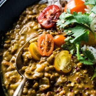 This delicious Crock Pot Lentil Curry is a slow cooker version of the most popular recipe on the blog. Throw everything into your pot, set the timer, and come home to a tasty vegetarian (and vegan!) dinner. You will LOVE it! | theendlessmeal.com