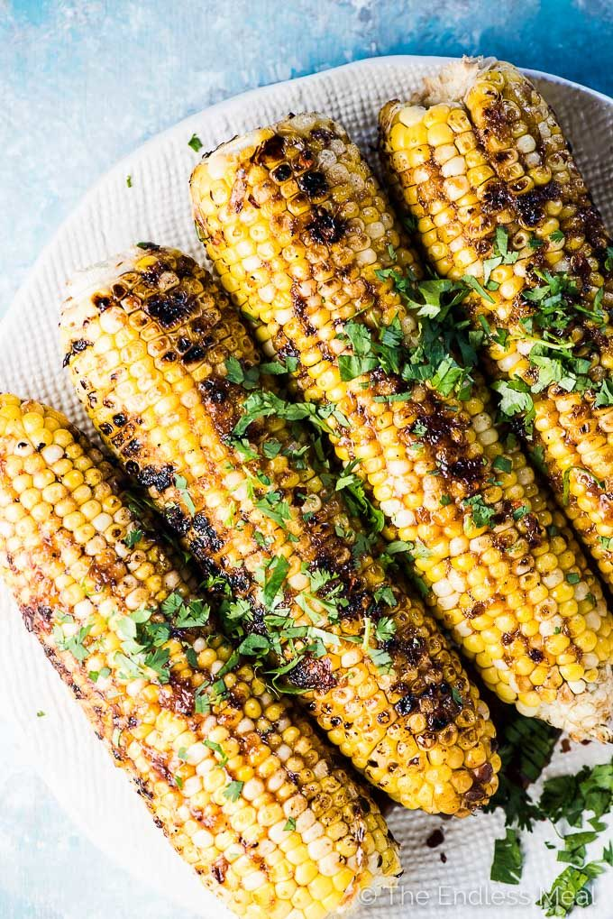 Honey garlic corn on the cob on a white plate.