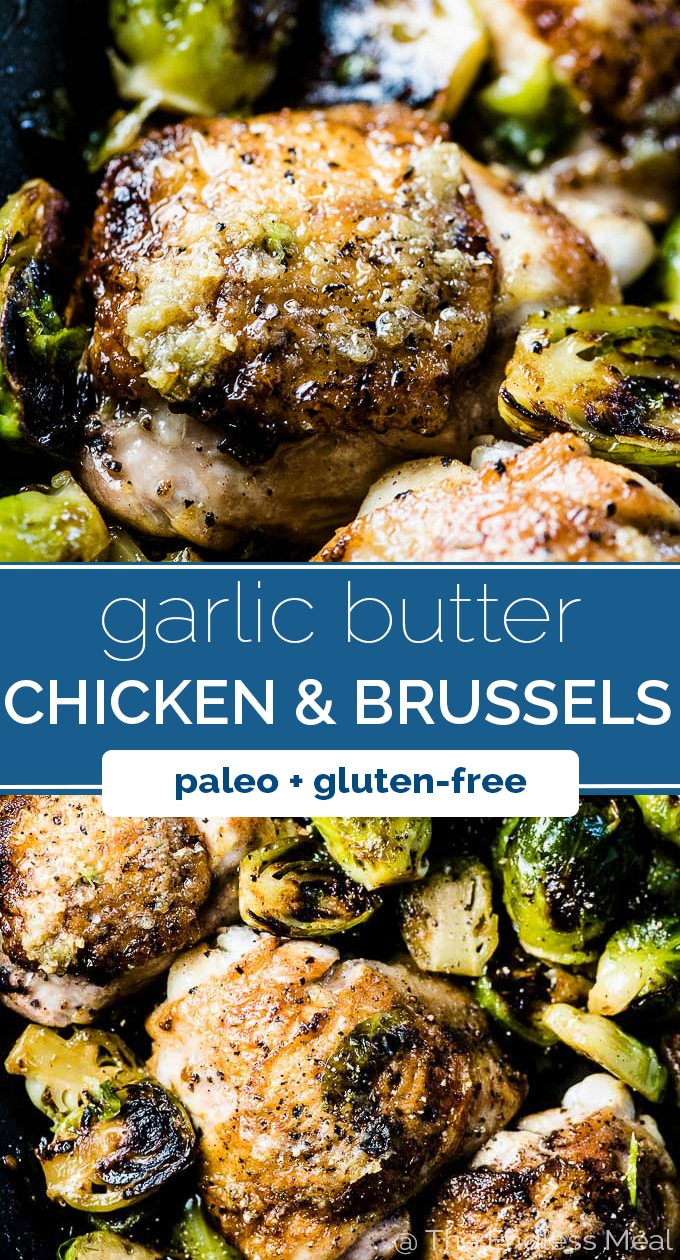 SAVE FOR LATER! Garlic Butter Chicken and Brussels Sprouts is a super easy to make (5 ingredient!) and healthy autumn dinner recipe. It's made on the stovetop with only one pan so clean up is a breeze, too! | low-carb + paleo + gluten-free + easily Whole30 | #theendlessmeal #chicken #brusselsprouts #brusselsspouts #brussels #falldinners #paleo #glutenfree #whole30 #healthydinners #healthyrecipes #chickenrecipes #stovetopchicken #lowcarb #keto