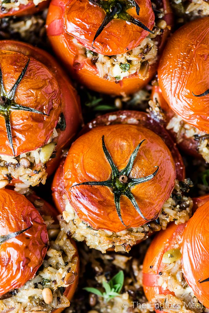 A close up of tomatoes stuffed with rice in a baking dish.