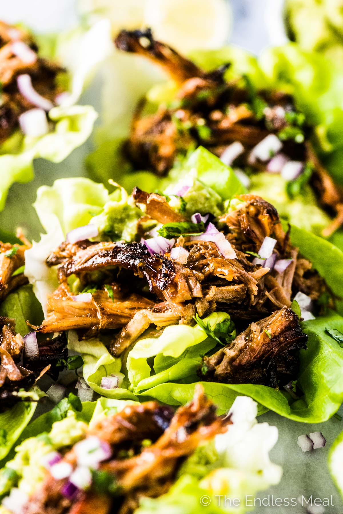 Taco Lettuce Wraps filled with the most delicious pulled pork carnitas.