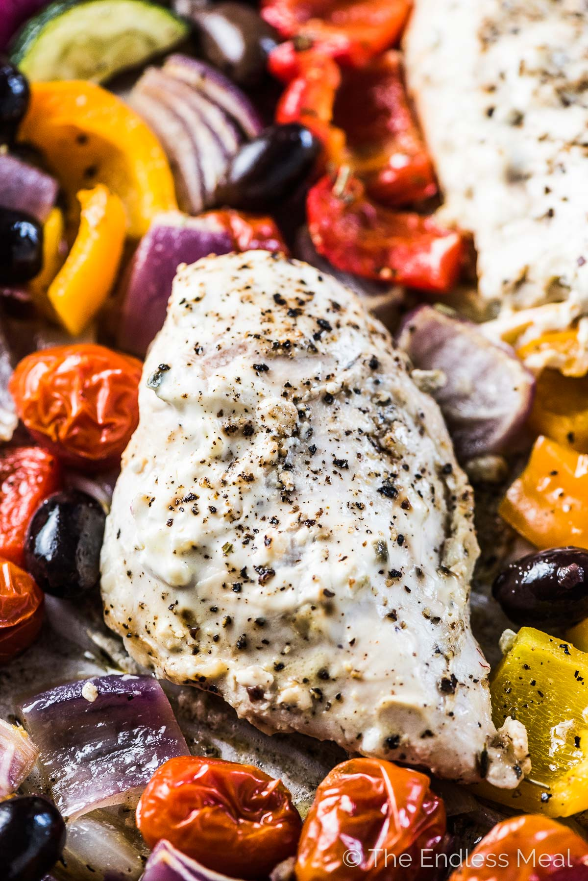 A close up of tzatziki chicken on a sheet pan with greek vegetables all around.