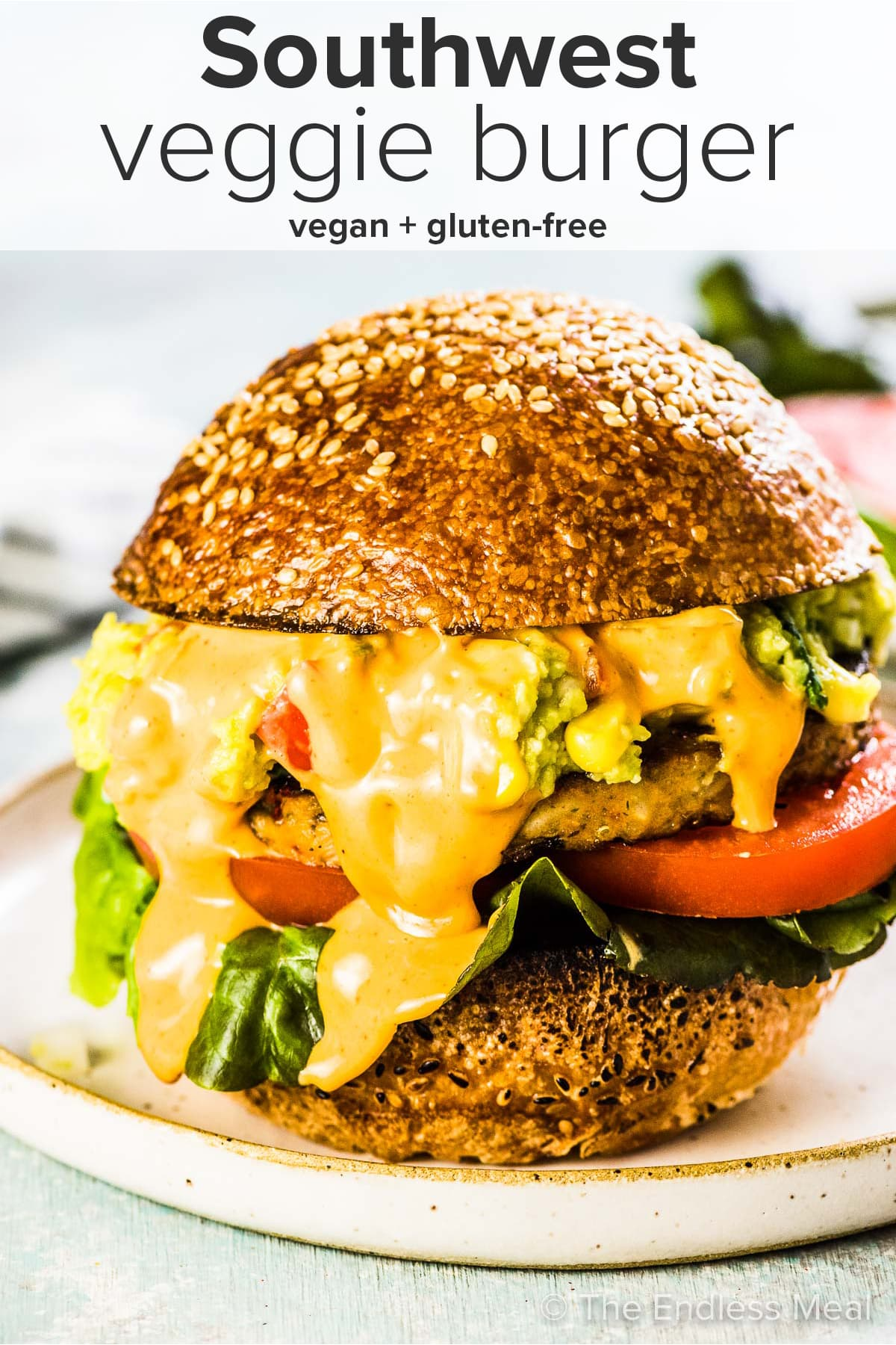 Southwest Veggie Burger with the recipe title on top of the picture.