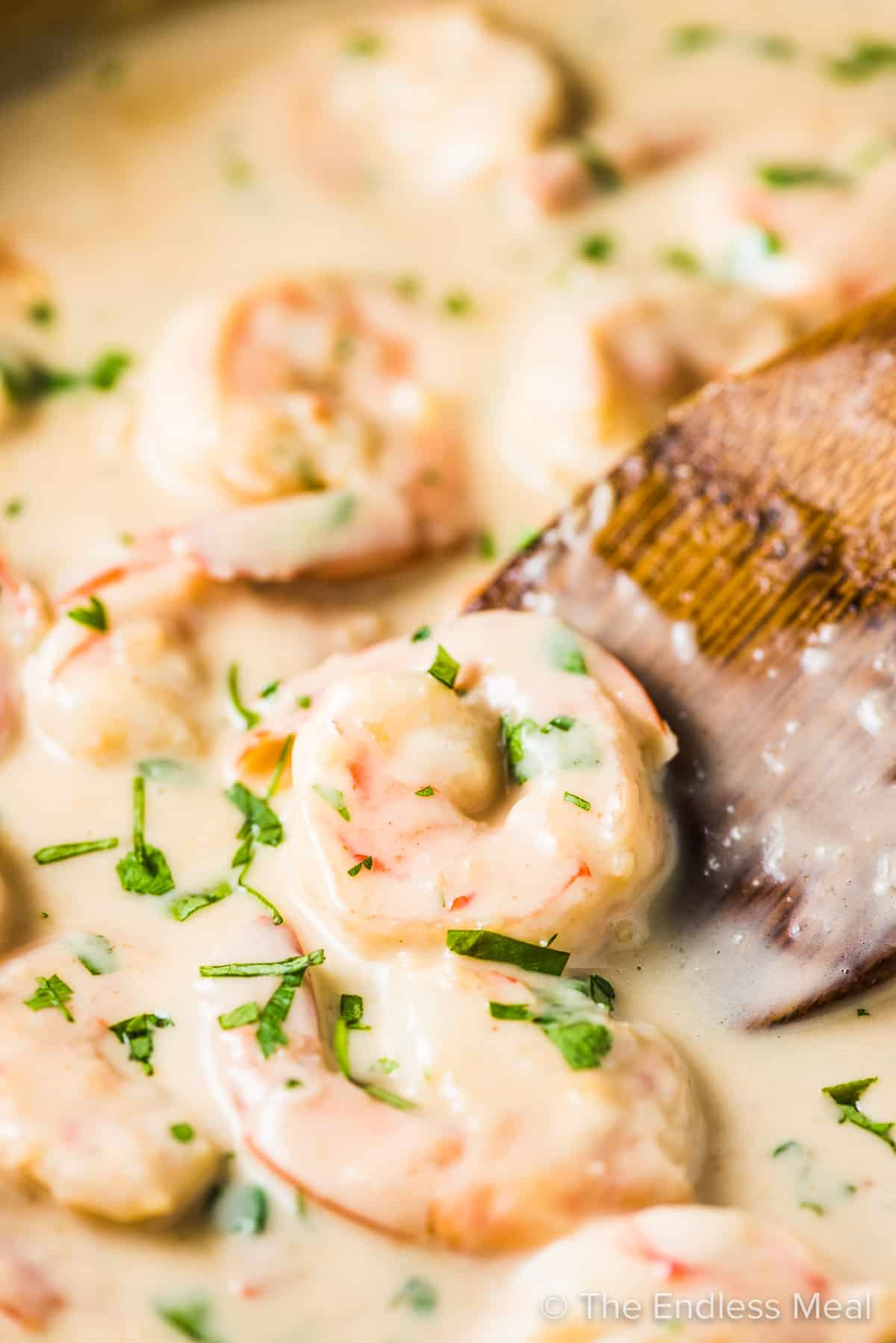 A close up of creamy coconut lime shrimp in a creamy coconut sauce with cilantro.
