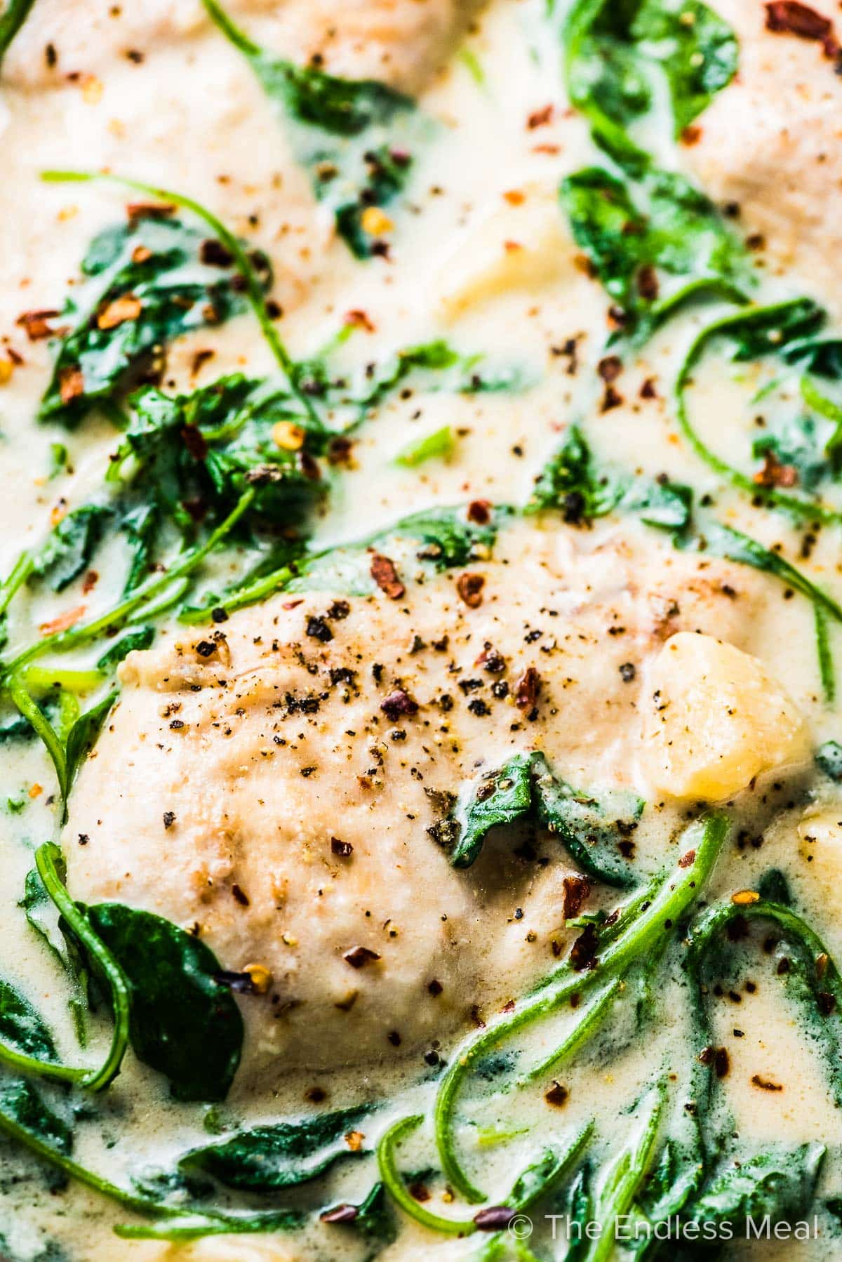 A close up of creamy garlic chicken in a pan with lots of wilted spinach and cream sauce.