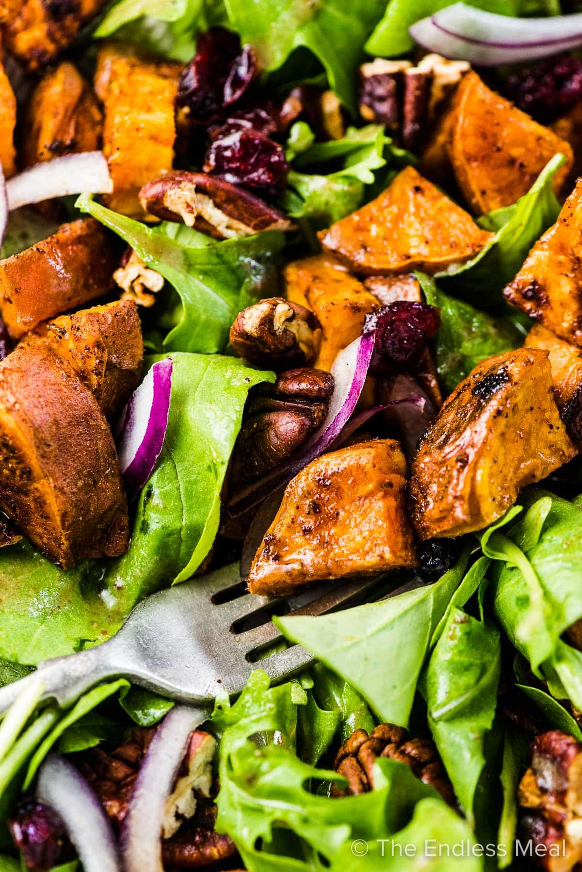 A close up of a fork in this sweet potato salad recipe.