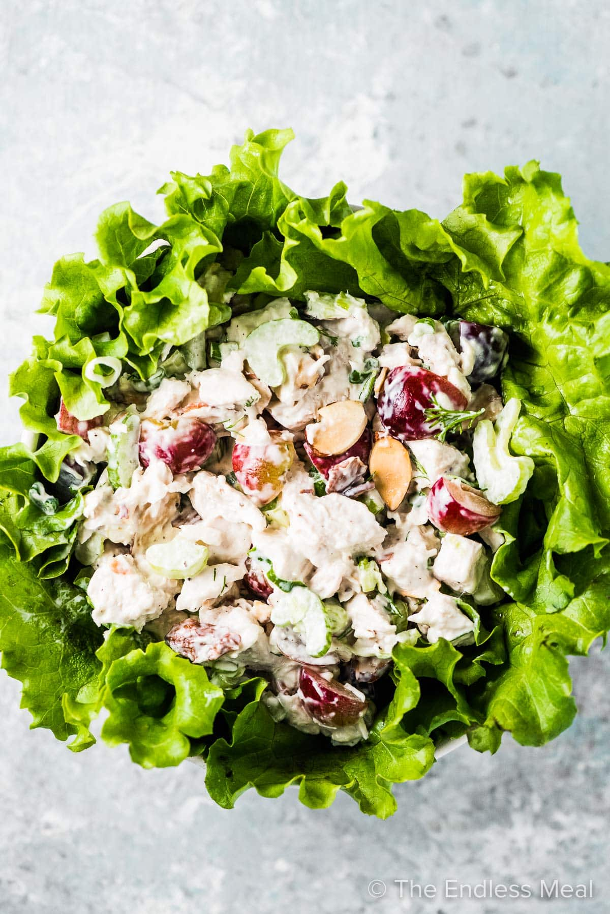 Lettuce greens in a bowl topped with chicken salad.