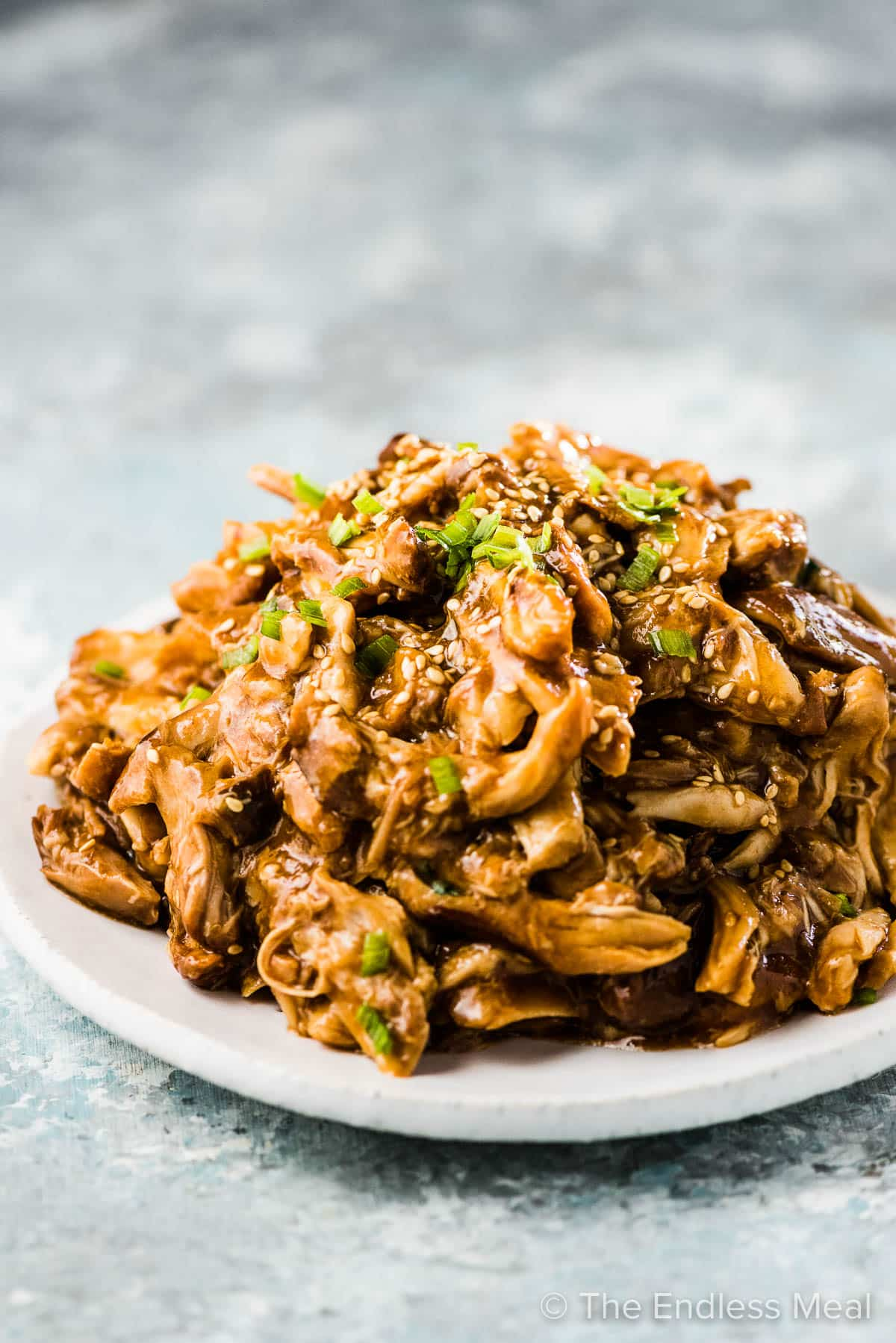 Shredded honey garlic chicken piled high on a plate.