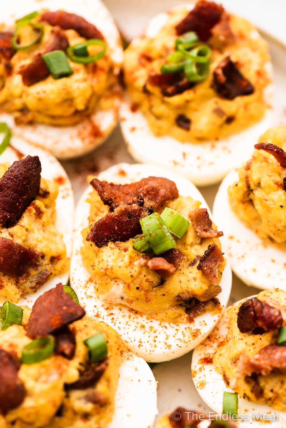 A close up of deviled eggs with bacon on a white plate.