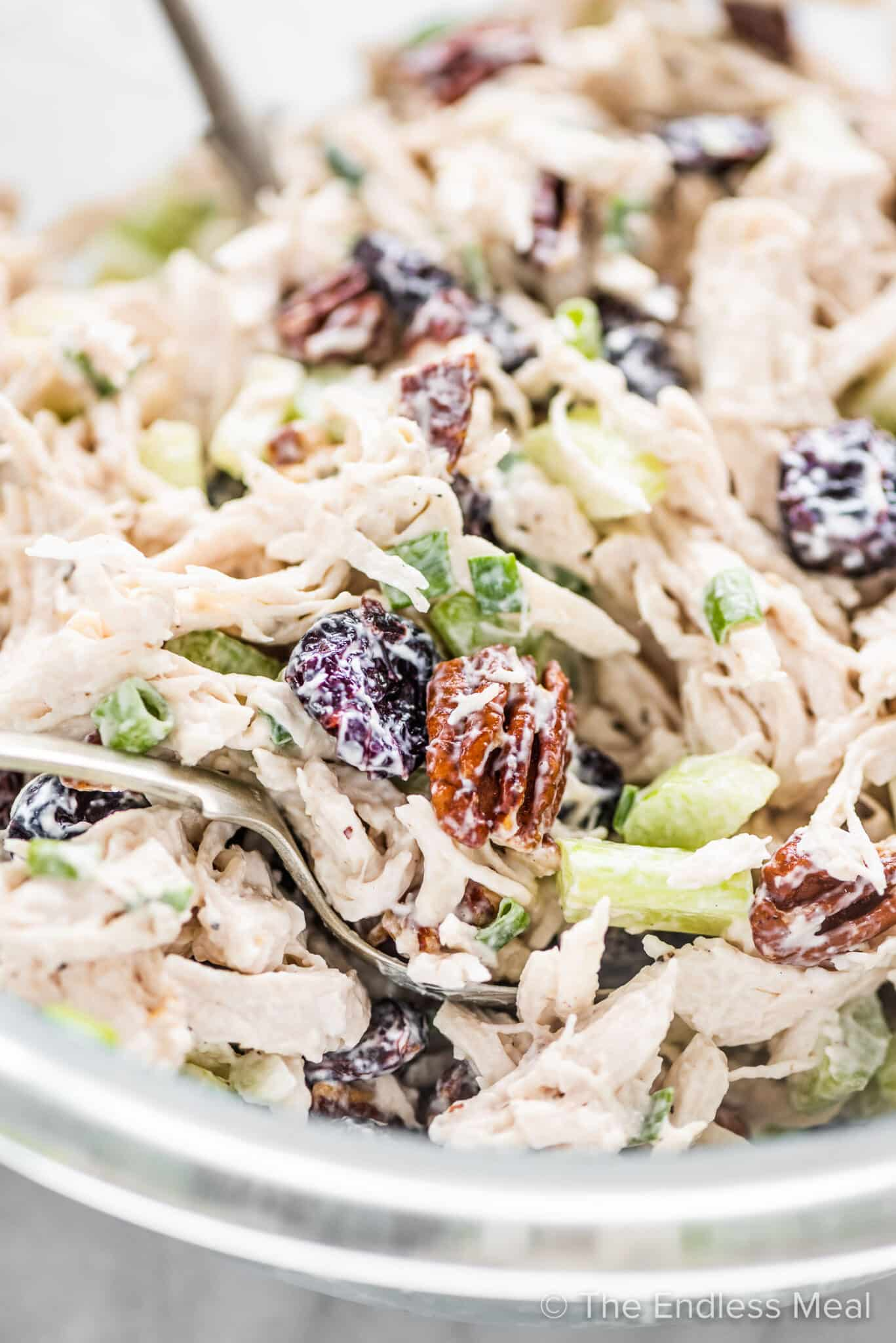 A close up of chicken salad with cranberries and pecans in a glass bowl.