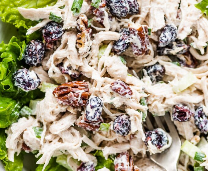 Cranberry chicken salad on a bed of greens.