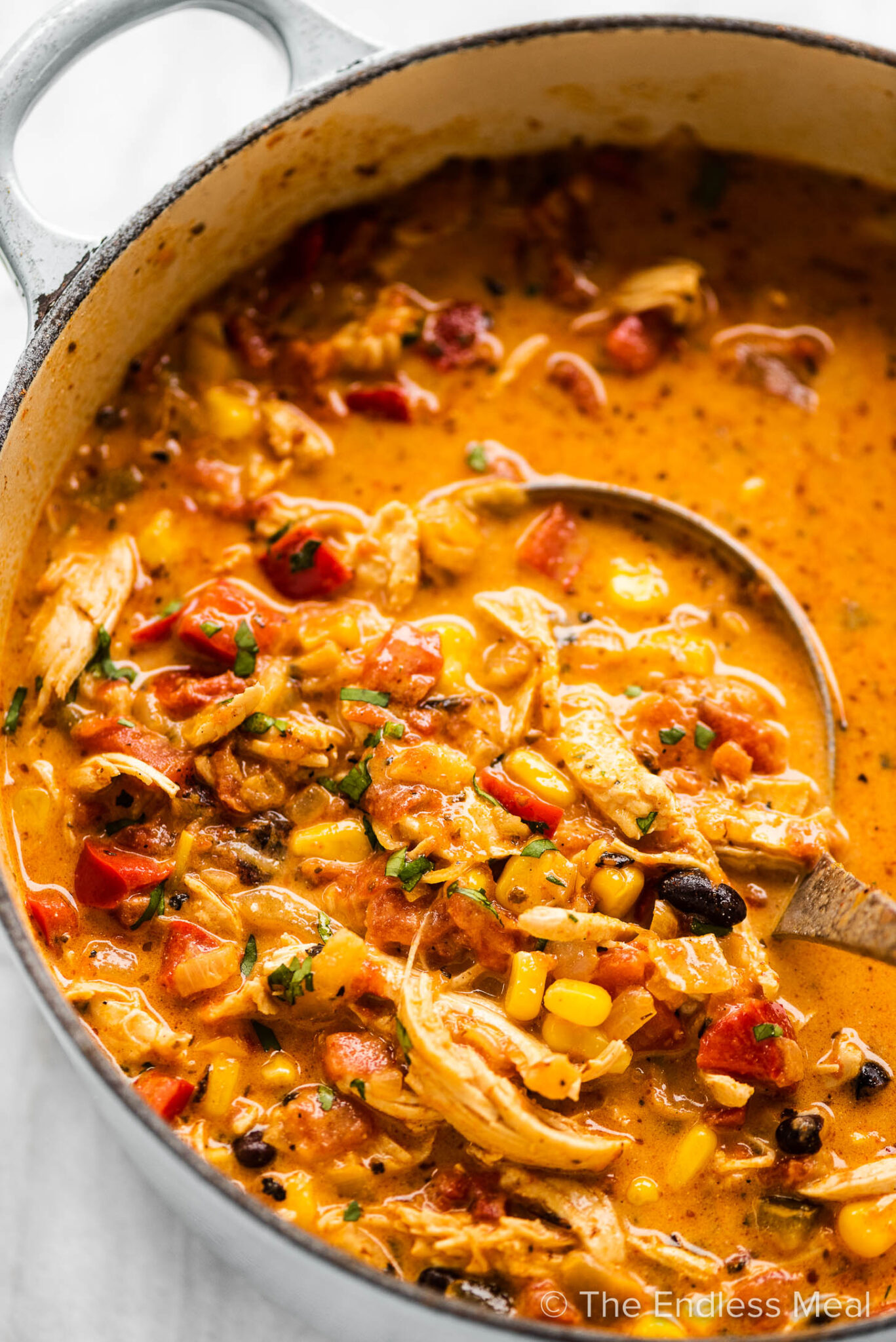 A pot of creamy chicken taco soup with a ladle scooping some out.