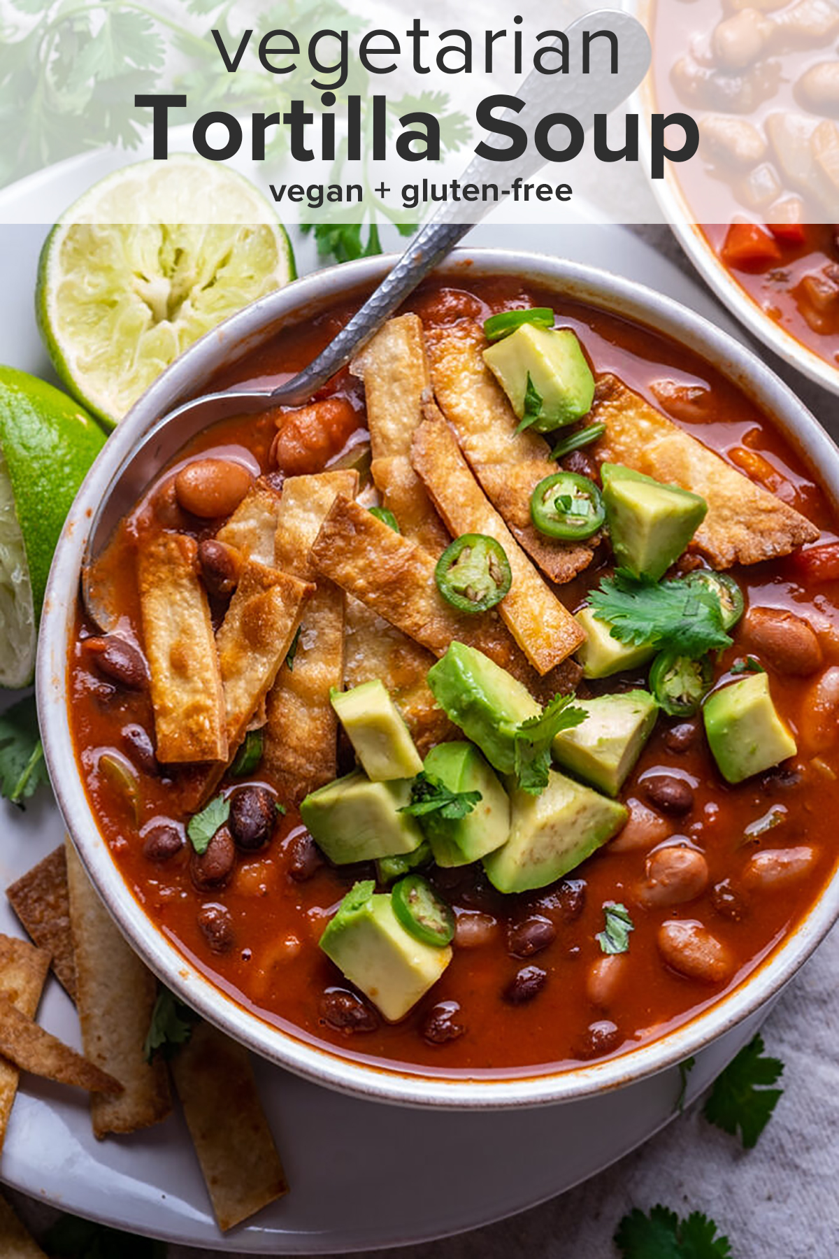 A bowl of Vegetarian Tortilla Soup with a spoon and the recipe title on top of the picture.